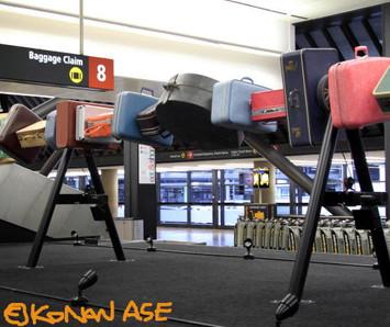Baggage_claim_1