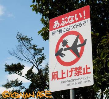 No_kite_1_1