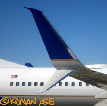 Split_scimitar_winglet_002_1_1