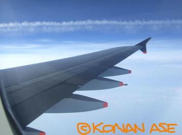 Wing_911_2_1