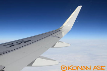 Wing_921_2_1