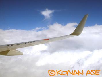 Wing_922_2_1