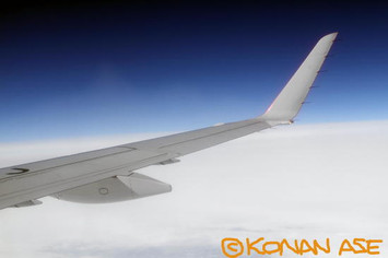 Wing_923_2_1