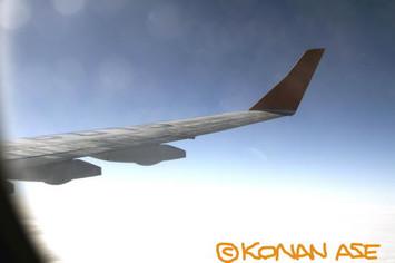 Wing_924_2_1