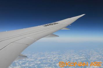 Wing_932_3_1