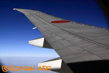 Wing_933_3_1