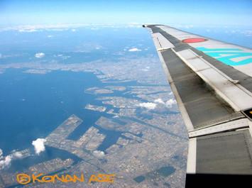 Wing_934_3_1