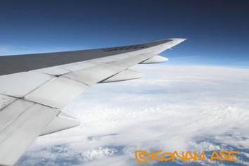 Wing_936_2_1