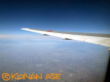 Wing_937_2_1