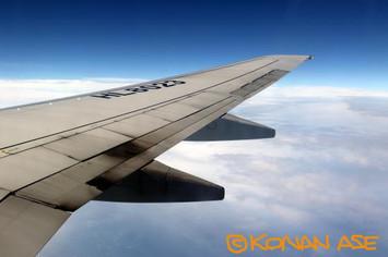 Wing_938_2_1