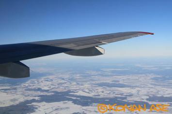 Wing_939_2_1