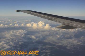 Wing_940_2_1