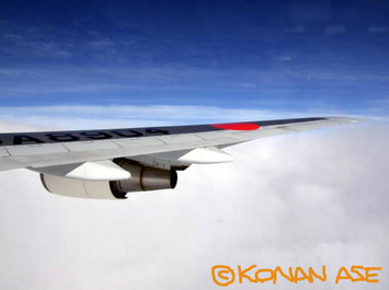 Wing_941_2_1