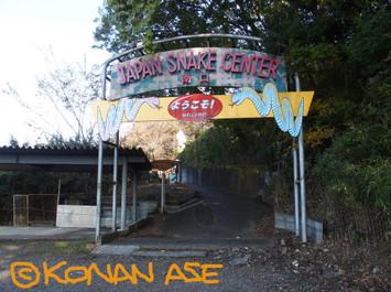 Snake_center_007
