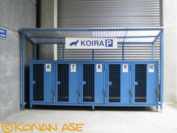 Koira_p_044_1