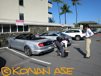Mustang_cv_002_1_1