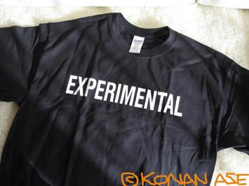Experimental_19_1