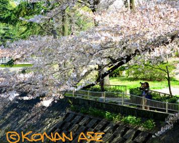 Sakura2018_001_1