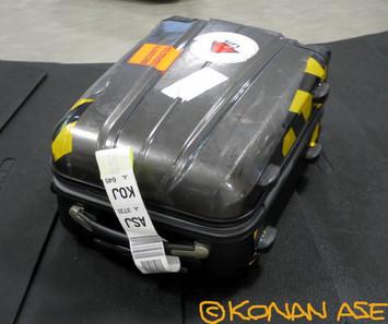 Carrybag_29_1_1