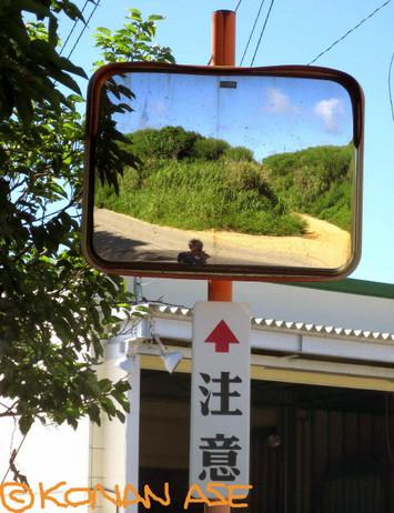 Mirror_49_2