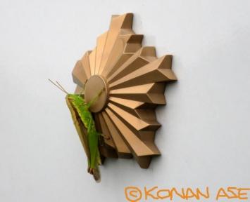 Grasshopper_281_1