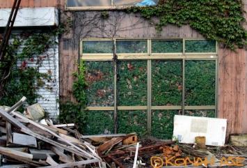 Greenhouse_001