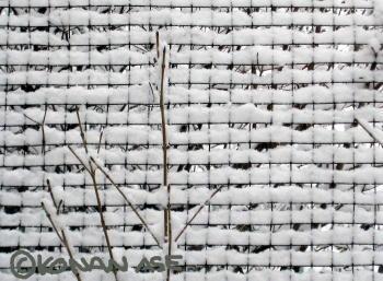snowfence01