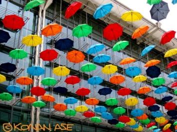 Umbrella_36_1