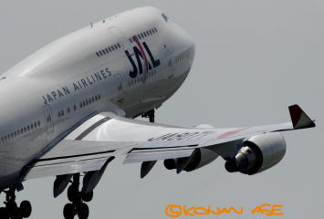Flex_wing_001