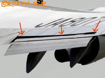 Flex_wing_002