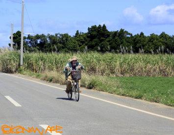 Islands_bicycle