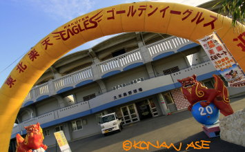 Golden_eagles