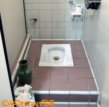 Shower_toilet_006
