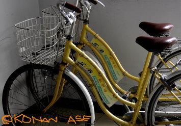 Cab_bike_001