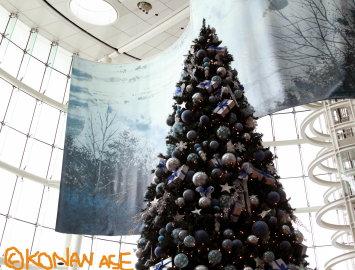 Xmas_tree2011