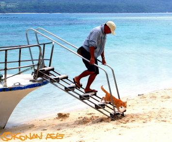 Beach_cat
