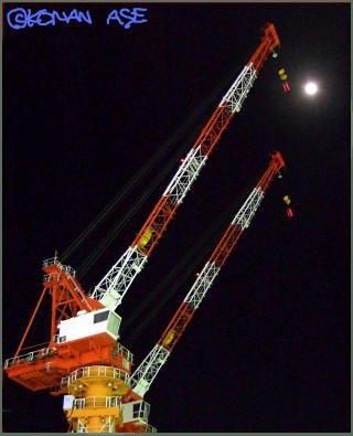 Crane02_1