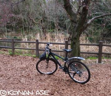 Bike_605_1_1