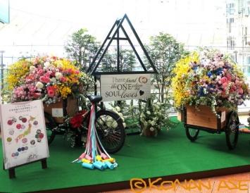 Bridal_flower_001_1