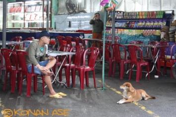 Dog_088_1