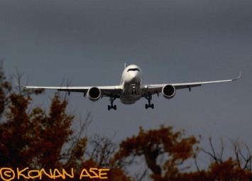 Jal350_771_1