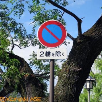 No_parking_790_1_1