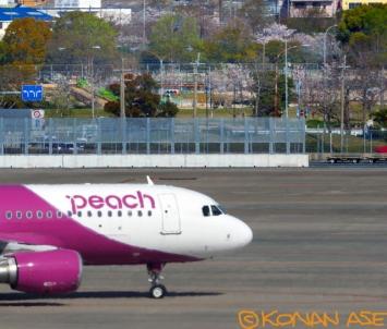 Peach_452_1