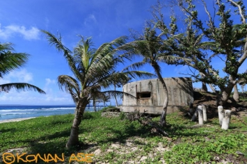 Saipan_pillbox_001_1