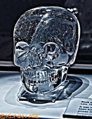 Skull_8238_1