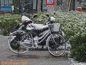 Snow056q_1