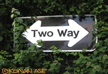 Twoway_023