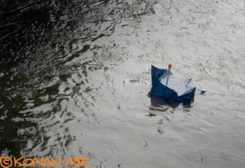 Umbrella_84_1